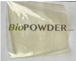 Effect Olive Stone Powder Properties Plant Protein-Based Bioplastic Films Used as Degradable Packaging Materials