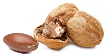 bio powder natural ingredients suppliers argan walnut shell powders